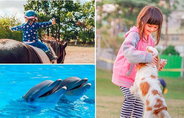 autismo-terapia-con-animales
